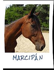 Marcipán